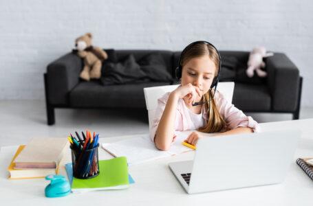 Coronakrisen styrker den online undervisning